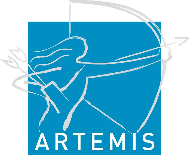 Eicose for Artemis study